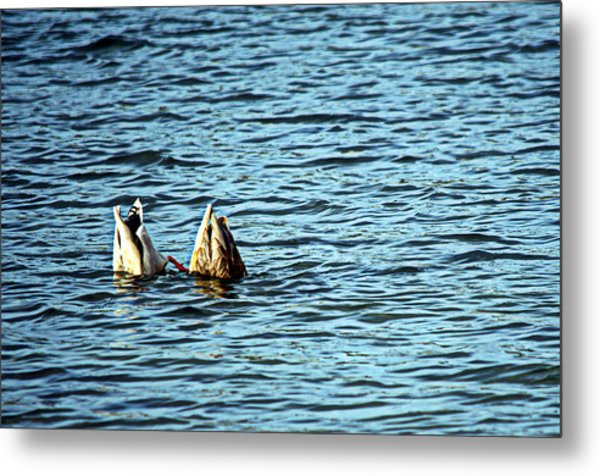 Bottoms Up Metal Print