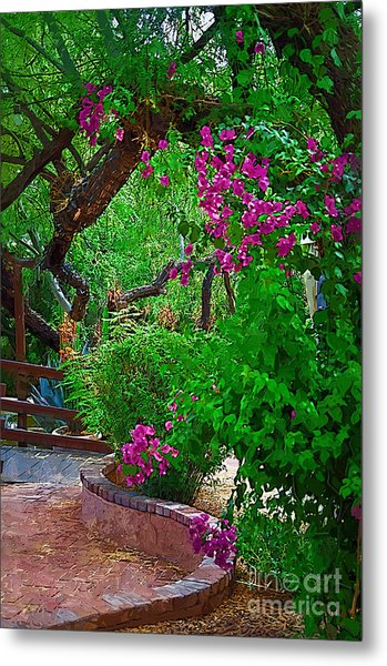 Bougainvillea In The Courtyard Metal Print