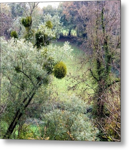 Mistletoe Ball Metal Print