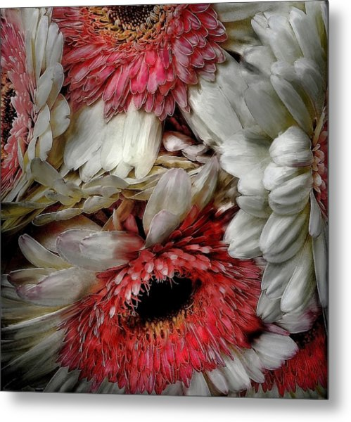 Bouquet Metal Print by Cary Shapiro