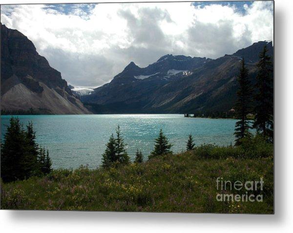 1021a Bow Lake Alberta Metal Print