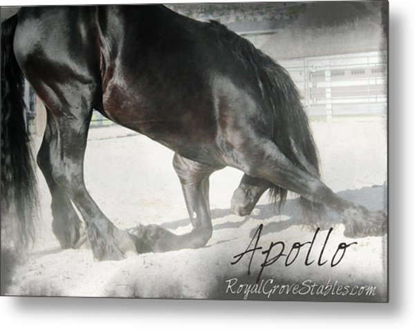 Bowing Before A Queen Metal Print