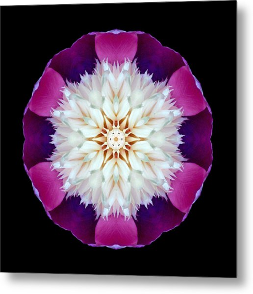Bowl Of Beauty Peony II Flower Mandala Metal Print