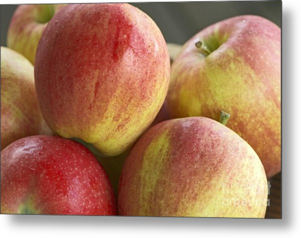 Bowl Of Royal Gala Apples Metal Print by Sharon Talson