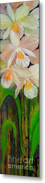 Boxed Orchids Metal Print