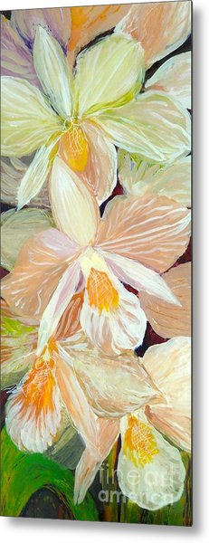 Boxed Orchids Detail Metal Print
