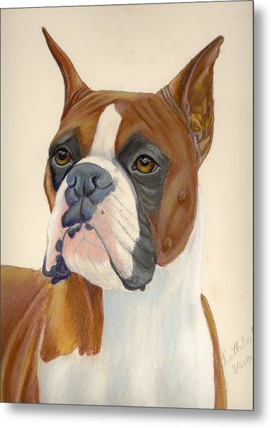Boxer Dog Metal Print