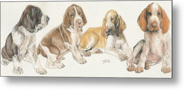 Bracco Italiano Puppies Metal Print