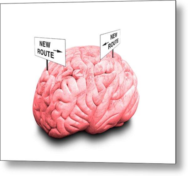 Brain Plasticity Metal Print by Victor De Schwanberg/science Photo Library
