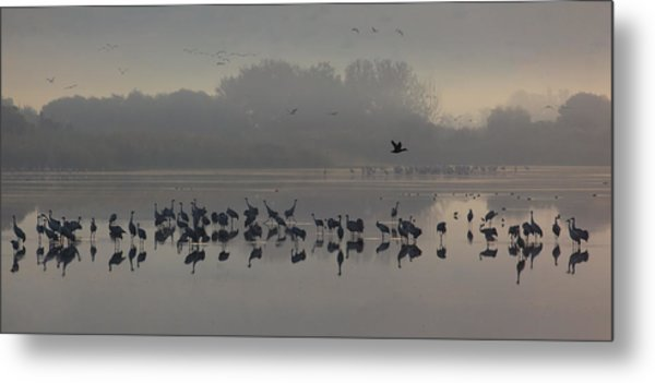 Break Of A New Day Metal Print