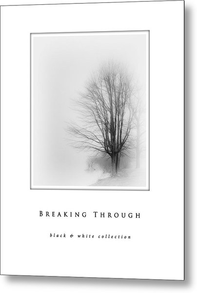 Breaking Through  Black And White Collection Metal Print