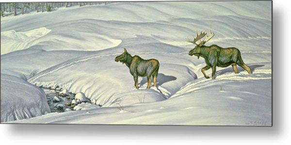 Breaking Trail Metal Print