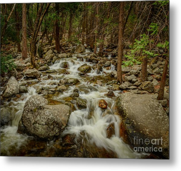 Bridalveil Creek In Yosemite Metal Print