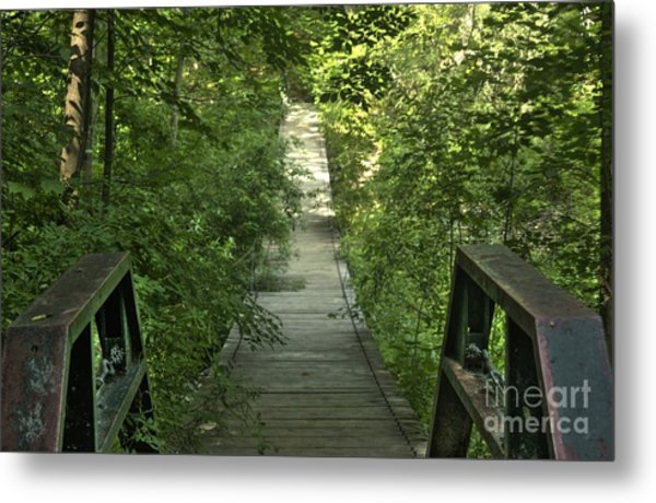 Bridge Into The Woods Metal Print