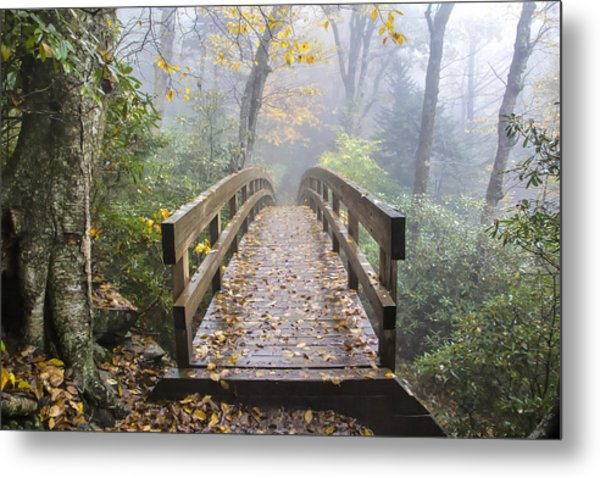 Bridge To Rough Ridge 07 Metal Print