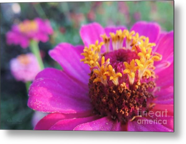 Bridgets Bloom Metal Print