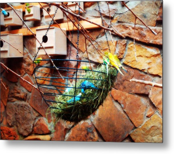 Bright Wings Metal Print