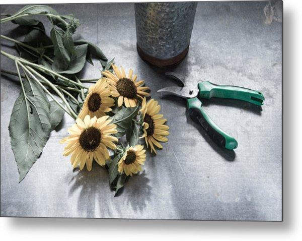 Bringing Blooms Indoors Metal Print