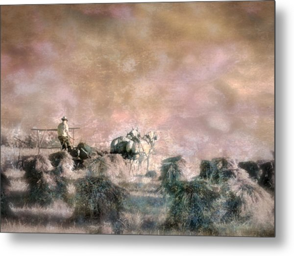 Bringing In The Sheaves II Metal Print