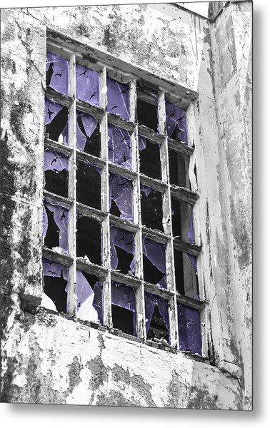 Broken Windows With Birds Metal Print
