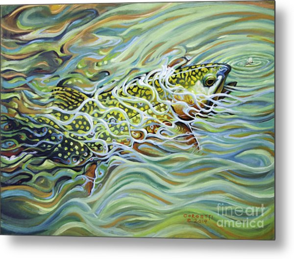 Brookie Flash Metal Print