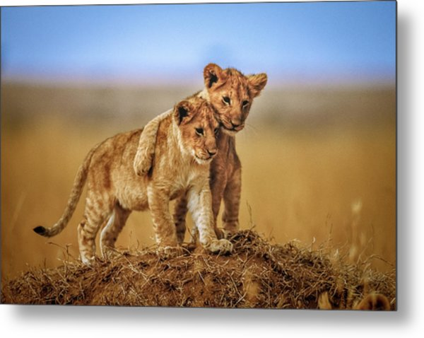 Brothers For Life Metal Print