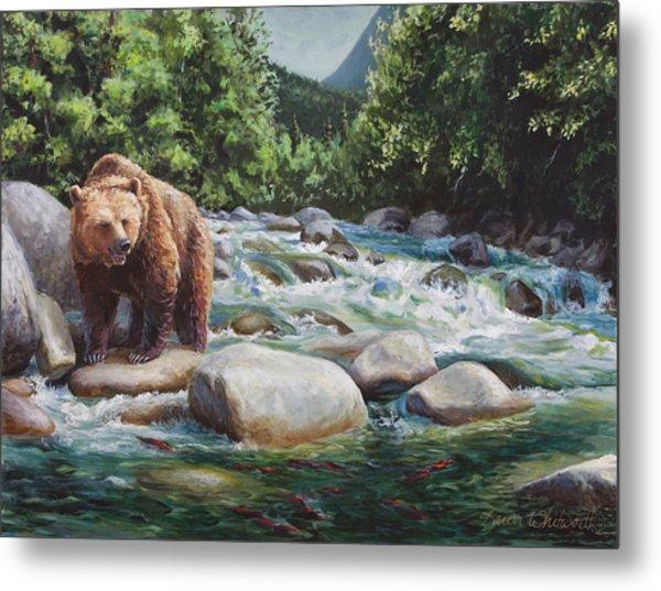 Brown Bear And Salmon On The River - Alaskan Wildlife Landscape Metal Print
