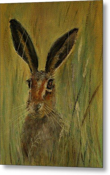 Brown Hare Miniature Metal Print