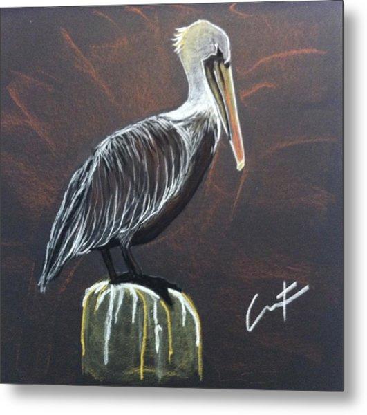 Brown Pelican At Shrimp Dock Metal Print