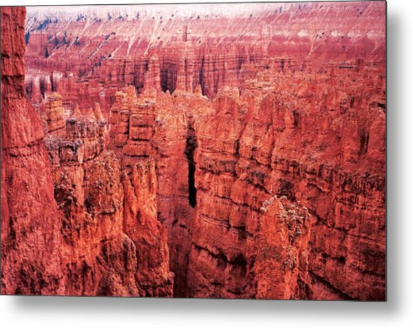 Bryce Canyon Red Metal Print