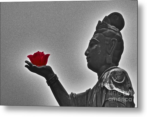 Buddha With Rose  Metal Print