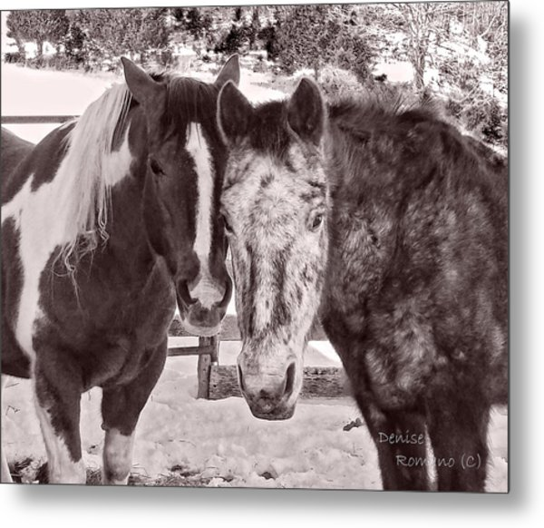 Buddies In Snow Metal Print