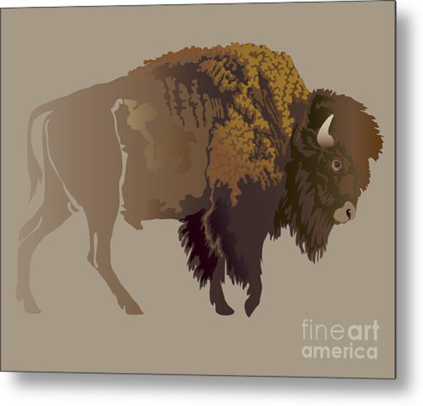 Buffalo. Hand-drawn Illustration Metal Print by Imagewriter