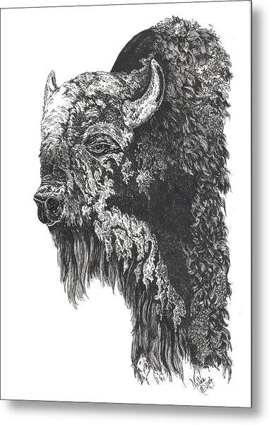 Buffalo In Spring Metal Print