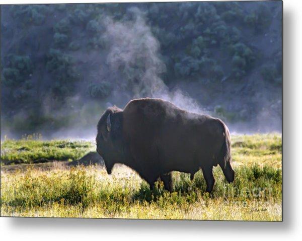 Buffalo Steam-signed-#2170 Metal Print