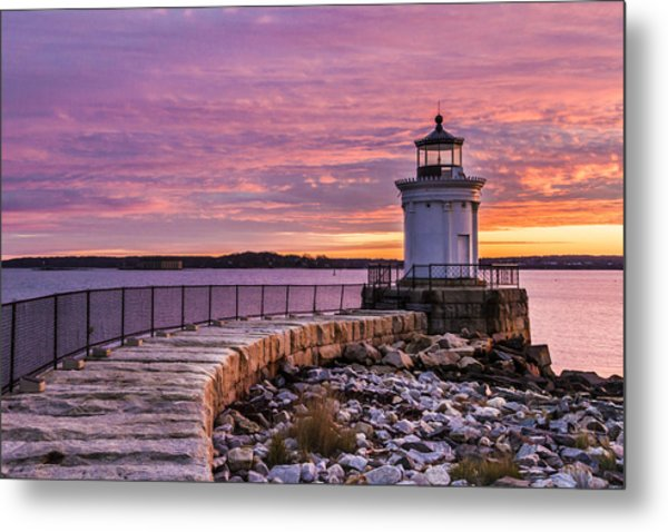 Bug Light Metal Print