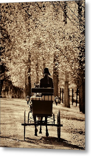 Buggy Ride Metal Print