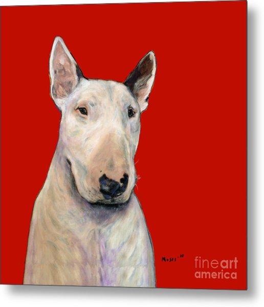 Bull Terrier On Red Metal Print
