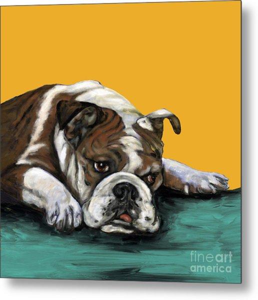 Bulldog On Yellow Metal Print