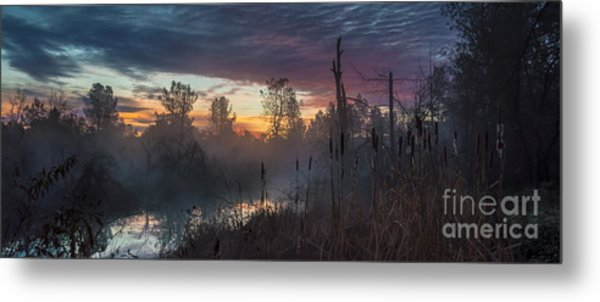 Bulrush Sunrise Full Scene Metal Print
