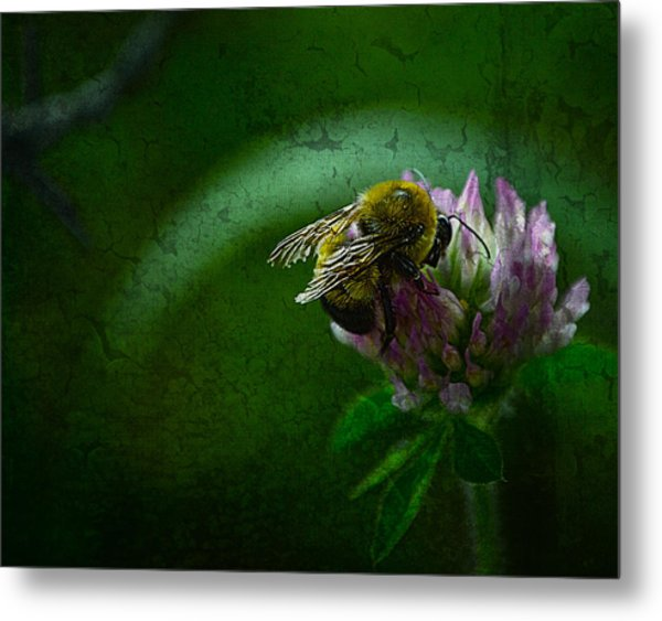 Bumble Bee Tattered Wings Art 2 Metal Print