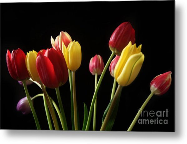 Bunch Of Tulips Metal Print