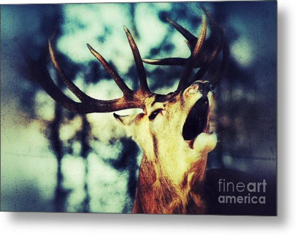 Burling Deer Metal Print