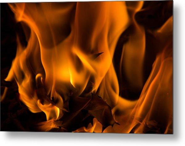 Burning Holly Metal Print