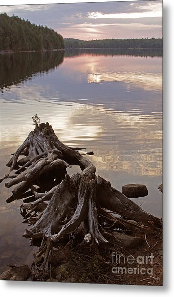 Burnt Island Lake Sunset Metal Print by Chris Hill