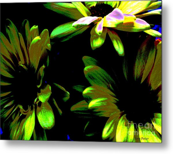 Burst Metal Print by Greg Patzer