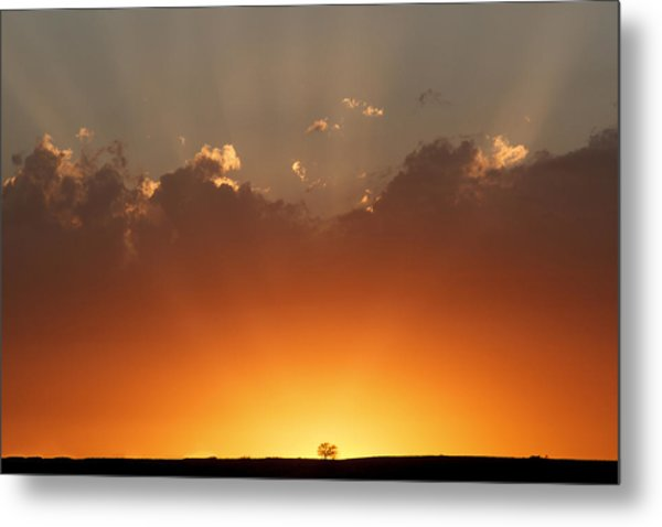 Burst Of Light Metal Print