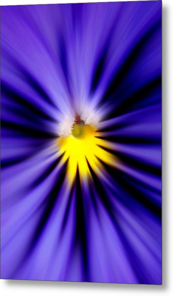 Bursting With Blue Pansy Metal Print