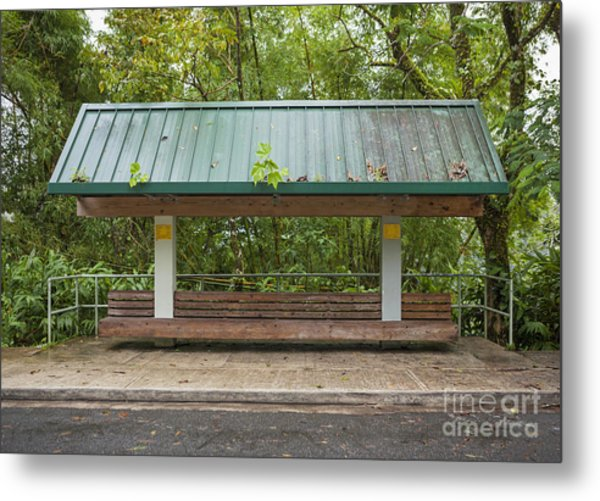Bus Stop Bench In The Rainforest  Metal Print