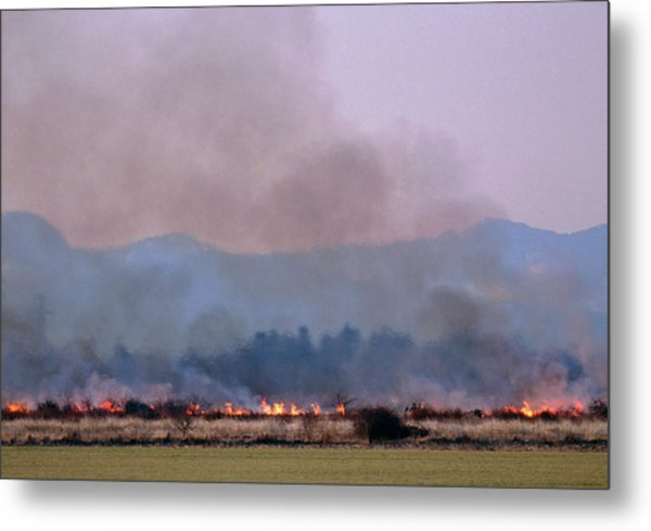 Bush Fire In British Columbia Metal Print by David Nunuk/science Photo Library